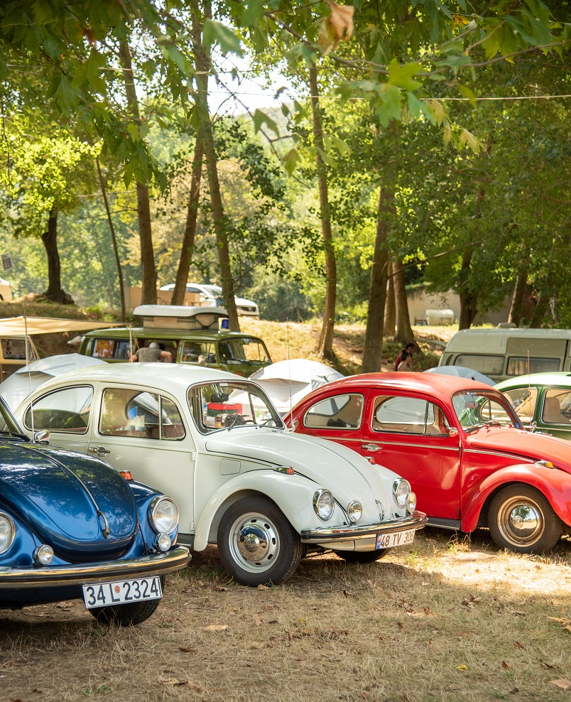 eski volkswagen festivali