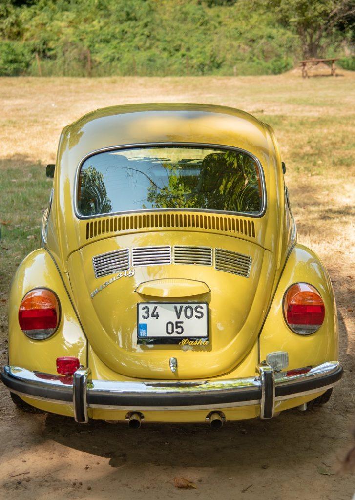 kaplumbağa arabalar